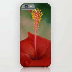 Hibiscus I iPhone 6s Slim Case