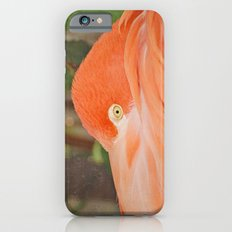 Wary Slim Case iPhone 6s