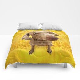 PARKER POSEY (dandilion) puffy cloud series Comforters