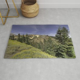 Photos California USA Lassen Volcanic National Park Nature Spruce Mountains Parks Scenery Grass Trees mountain park landscape photography Rug