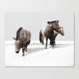Ice Age Horses Canvas Print