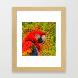 MODERN ART RED MACAW GREEN JUNGLE PATTERNED DESIGN Framed Art Print