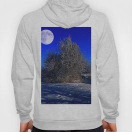 snow and moon Hoody