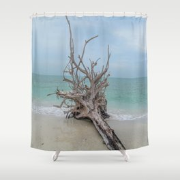 Remember Your Roots Shower Curtain