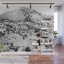 Santa Cruz County, Arizona. 1909 Wall Mural