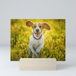 Beagle dog run Mini Art Print