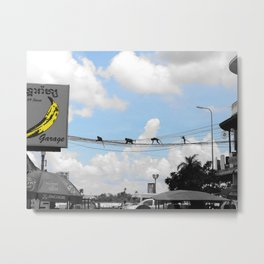 Monkeying Around (Phnom Penh, Cambodia) Metal Print