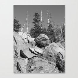 Hard Places Canvas Print