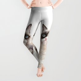 Grumpy Watercolor Cats Leggings