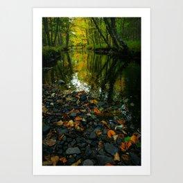 Fall Brook  Art Print