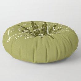 Legalize Floor Pillow