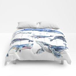 Whales, Whale design, whale wall art, sea, marine aquatic animal art, school learning wall Comforters