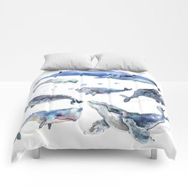 Whales, Whale design, whale wall art, sea, marine aquatic animal art, school learning wall Comforters