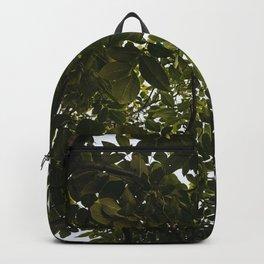 Under The Walnut Tree Backpack