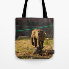 Monkey Business I Tote Bag