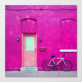 fuchsia house Canvas Print