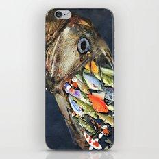 Fishes iPhone & iPod Skin