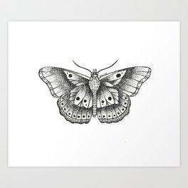 Harry Styles butterfly Art Print