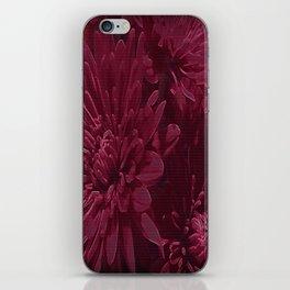 Burgundy Chrysanthemums iPhone Skin