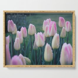 Yellow-pink tulips with dew drops   Keukenhof   Netherlands   floral art   soft tones   fine art   Serving Tray
