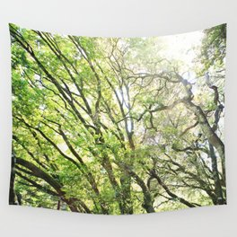Reaching for the Sun Wall Tapestry