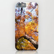 Autumn Sky Slim Case iPhone 6s