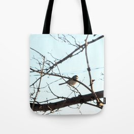 Isolated Little Chickadee Tote Bag