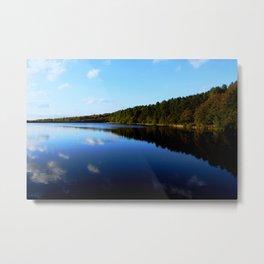 Vivid Landscape  Metal Print