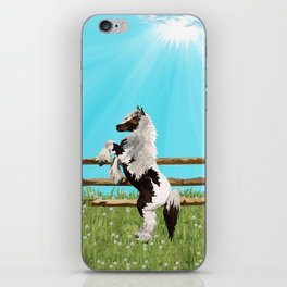 The Vanner Horse On a Heavenly Field of Daisies iPhone Skin