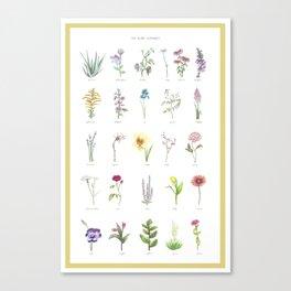 The Plant Alphabet Canvas Print
