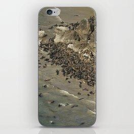 The Sun Worshippers, No. 1 iPhone Skin