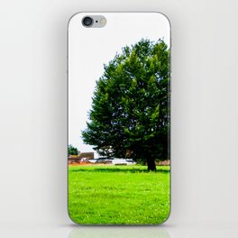 Windswept - Tree in field (Wiltshire, England) iPhone Skin