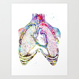 Human heart and lungs Art Print
