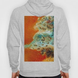 The Oasis (Color) Hoody