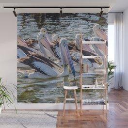 Pelicans Wall Mural