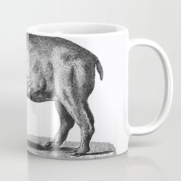 Illustration of Tapir from Zoological lectures delivered at the Royal institution in the years 1806- Coffee Mug