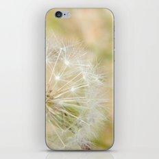 Dandilion iPhone & iPod Skin