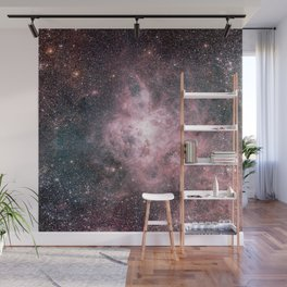 You are made of Stardust Wall Mural