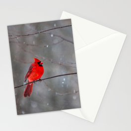 Cardinal In the Snow Stationery Cards