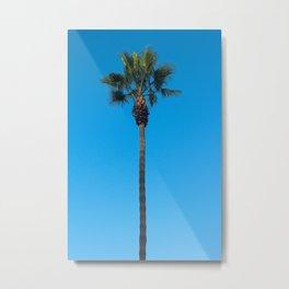 Classic Palm Tree Metal Print