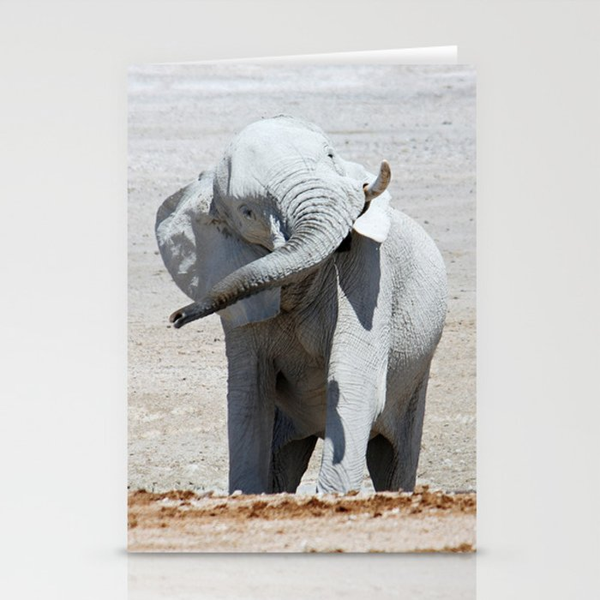NAMIBIA ... Elephant fun I Stationery Cards