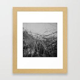 absent Framed Art Print