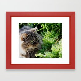 Natural Element Framed Art Print