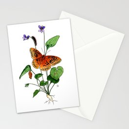 Spangled Fritillary and Violet Stationery Cards