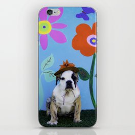 English Bulldog Puppy Wearing a Hat in front of a Spring Background with Tall Flowers iPhone Skin