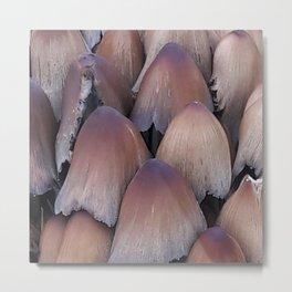 Inky-cap-mushrooms zoom Metal Print