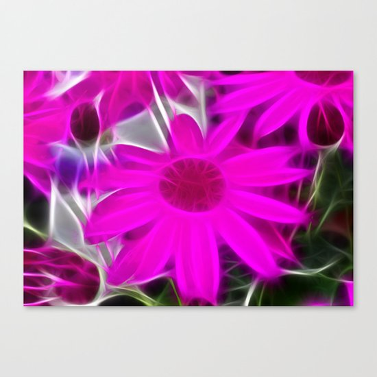 Senetti Daisy Canvas Print