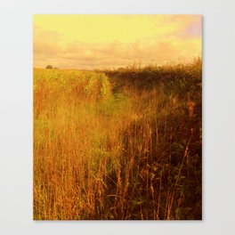 Sweetcorn Alley. Canvas Print
