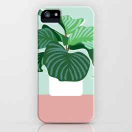 Big Fig iPhone Case