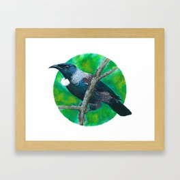 New Zealand Tui - Painting in acrylic Framed Art Print
